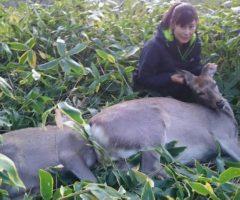 ★中止とさせていただきました★【第二回】女性ハンターが撃った鹿 解体体験&鹿肉堪能BBQ、開催いたします。